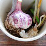 garlic substitutes
